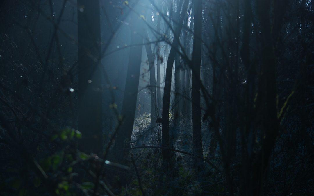 Jack Unterweger – mutmaßlicher Serienmörder mit Hang zur Poesie